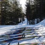 Skitesten